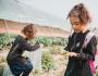 天津惠灵顿幼儿园教育焦点:课堂之外的探索之旅